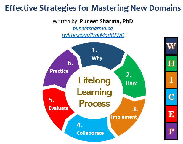Effective Strategies for Mastering New Domains image